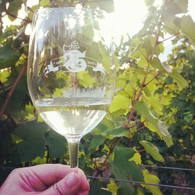 Riesling glass in the vineyard